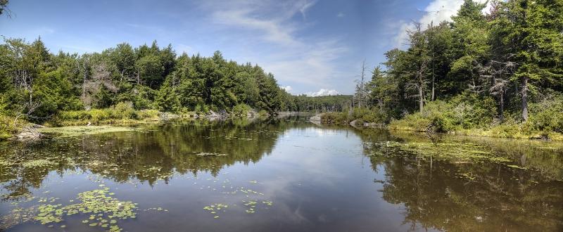 Guilder-Pond