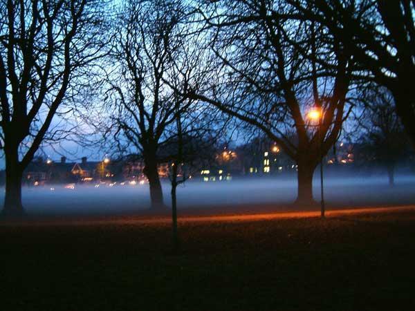 Misty-Evening
