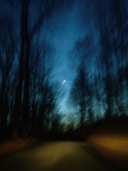 Evening-Drive