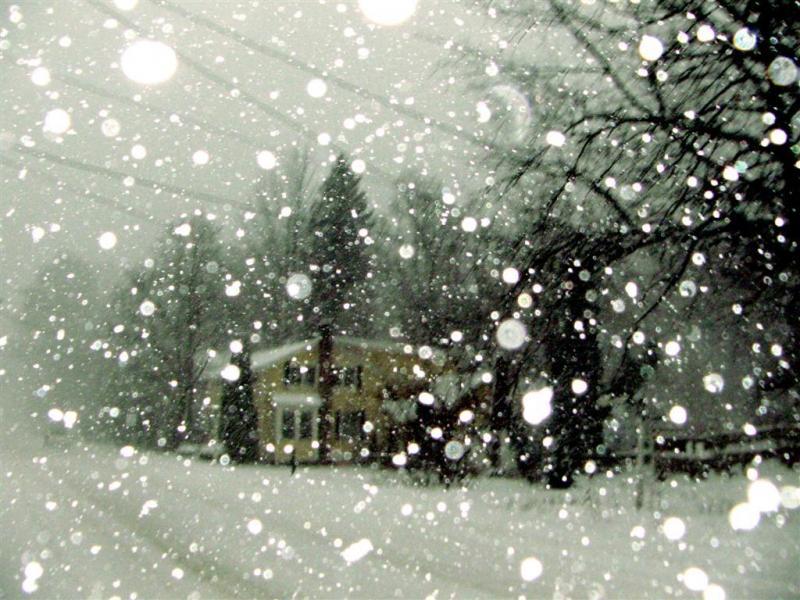 Our-Christmas-Card