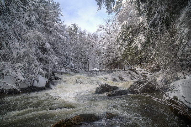 12th-New-Forge-State-Forest