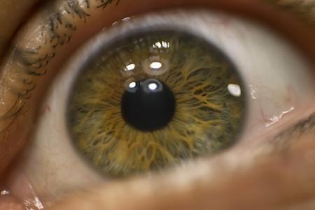 16th-Eye-Spy