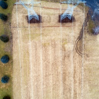 The Fields Have Eyes