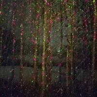 Laser Lights & The Snow