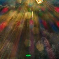 Light Forms