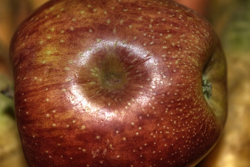 The-Eye-of-My-Apple