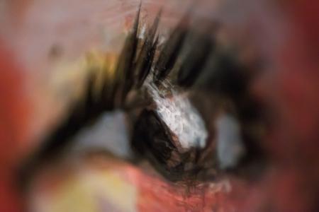 The-Poetic-Eye