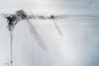 Winter's Pallet