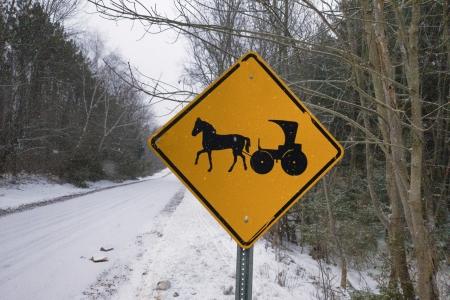 Snow Buggy Crossing