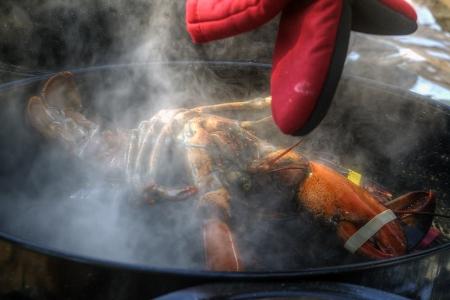 Pot-Lobster