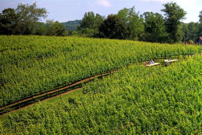 Blackstock-Winery