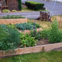 Catskill Community Garden