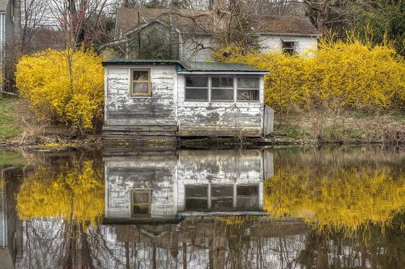 Golden-Pond