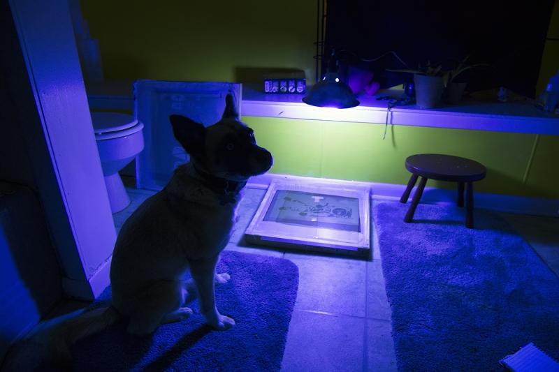 Dark-Room-Assistant
