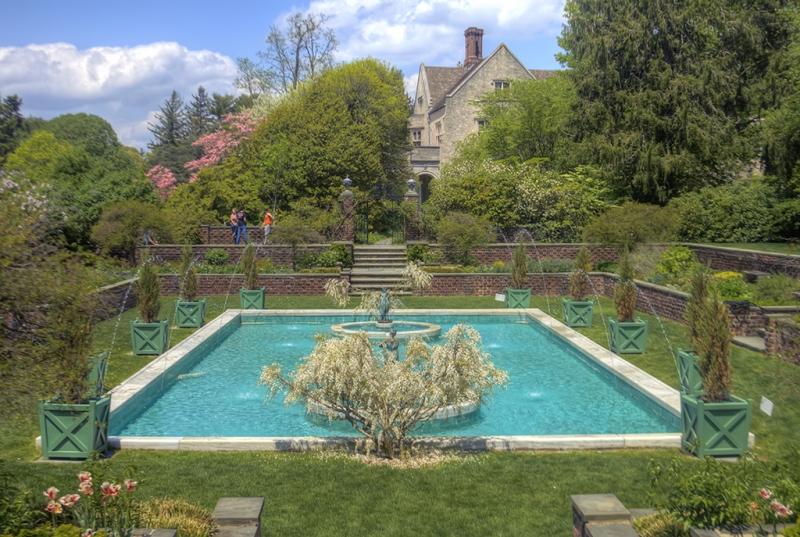 The-Garden-Pond