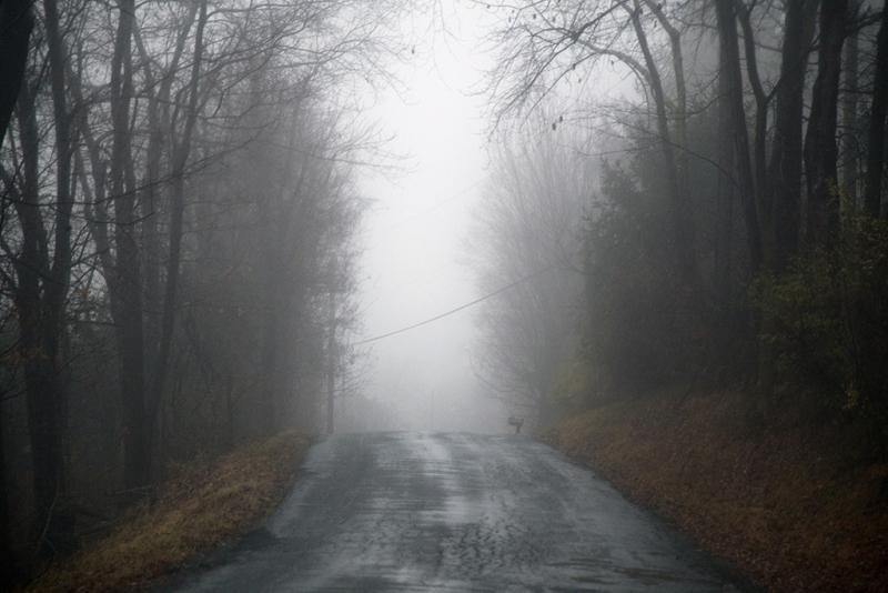Take-a-Back-Road