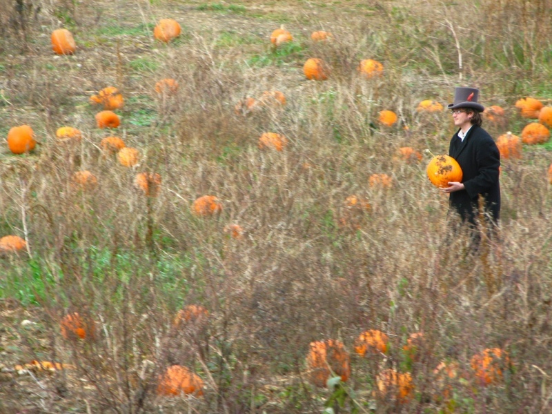 The-Great-Pumpkin-Hunt-of-08