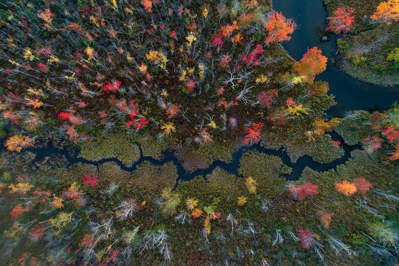Autumnal-Meanderings