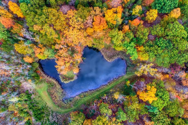 Over-Golden-Pond