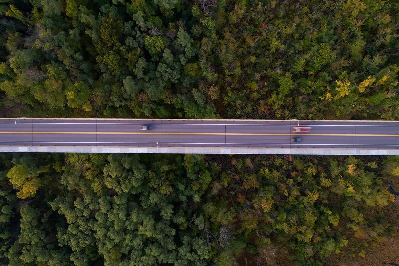 Cross-Tree-Traffic