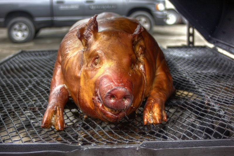 The-Whole-Hog