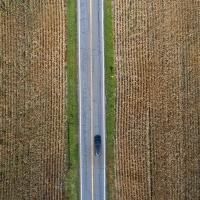 Drive Thru Corn Maze